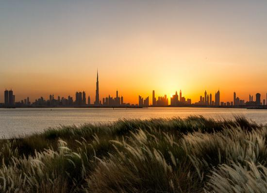 #report: Dubai registered 20% increase in the number of real estate transactions during 2019